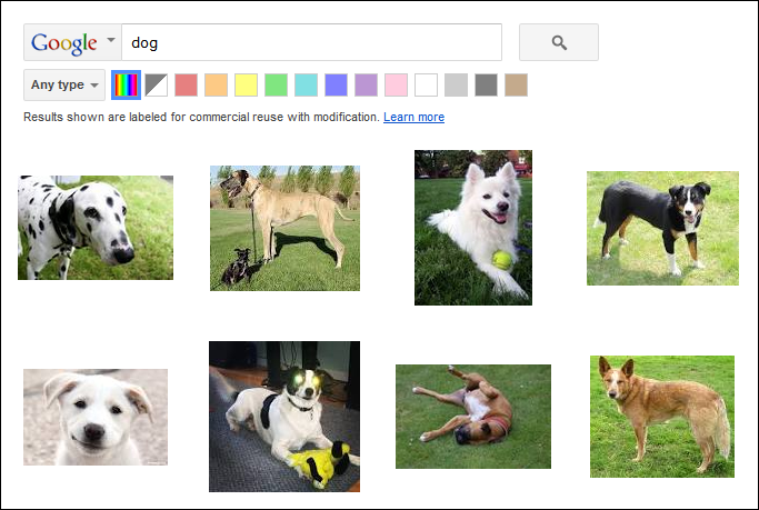 dog image search