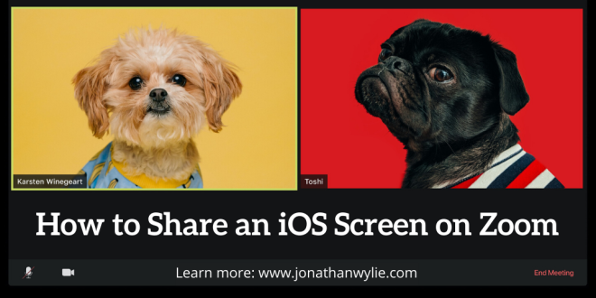 Two dogs in a Zoom video call. Title reads, how to share an iOS screen on Zoom.